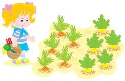 女孩在一个菜园里 免版税库存照片