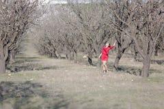 女孩在一个被忽略的杏仁果树园 图库摄影