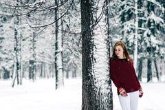 女孩在一件褐红的毛线衣穿戴了,并且白色裤子倾斜了反对树干反对积雪的冬天背景  库存照片
