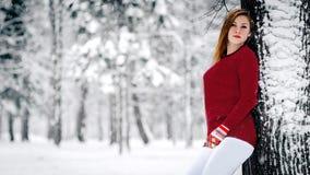 女孩在一件褐红的毛线衣穿戴了,并且白色裤子倾斜了反对树干反对积雪的冬天背景  库存图片