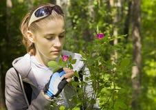 女孩在一朵野生狗玫瑰布什附近的公园 免版税库存照片