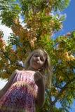 女孩在与花的结构树下 库存图片