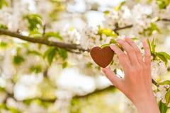 女孩在他的手上拿着心脏 r 健康,爱、器官、捐款人、希望和心脏病学捐赠的概念 免版税库存图片