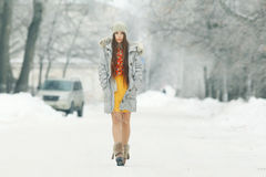 女孩在冬天多雪的公园 免版税库存照片