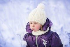 女孩在冬天 库存照片