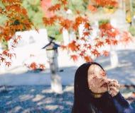 女孩在她的眼睛前投入了槭树叶子,彦根,日本 库存图片
