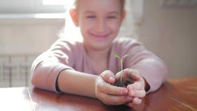 女孩在手上的拿着年轻绿色植物 成长,关心的概念和标志,保护地球,生态 股票录像