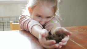 女孩在手上的拿着年轻绿色植物 成长,关心的概念和标志,保护地球,生态 股票视频