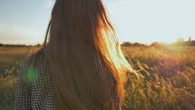 女孩在日落的晚上走领域并且投掷她的头发对边 户外秀丽浪漫女孩 影视素材