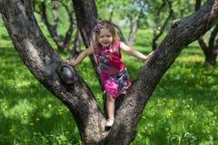 女孩在春天庭院里 免版税库存图片