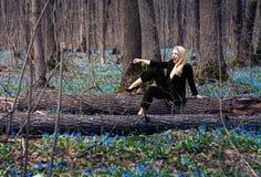 女孩在春天森林 库存照片