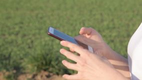 女孩在智能手机写着一则消息 股票视频