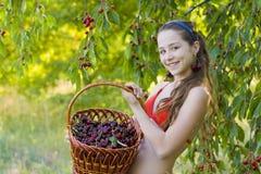 女孩在有一个甜樱桃篮子的庭院里 免版税库存照片