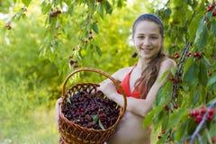 女孩在有一个甜樱桃篮子的庭院里 免版税库存图片