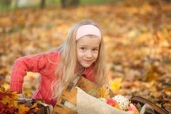 女孩在有书、花束和一点南瓜的秋天公园 图库摄影