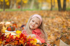 女孩在有书、花束和一点南瓜的秋天公园 免版税库存照片
