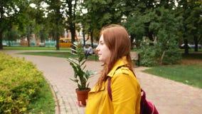 女孩在有植物的城市附近走 股票录像