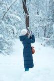女孩在森林拍在她的手机的照片 库存照片