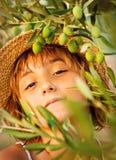 女孩在橄榄色的农场 图库摄影
