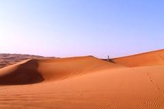 女孩在沙漠 免版税库存图片
