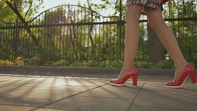 女孩在沿街道的脚跟走 在脚跟特写镜头的女性腿 街道时尚 春天 股票视频