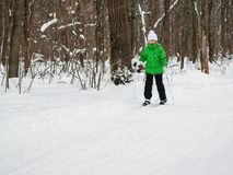 女孩在滑雪移动用棍子在冬天森林里 库存照片