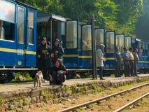 女孩在火车附近喂养猴子在Nilgiri,泰米尔纳德邦,印度 库存图片