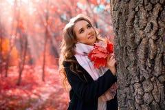 女孩在秋天森林里 库存照片