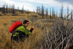 女孩在秋天的拍摄一个被烧的森林 免版税图库摄影