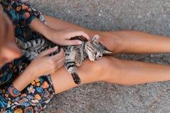女孩在街道抚摸一只美丽的无家可归的猫 库存照片