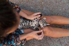 女孩在街道抚摸一只美丽的无家可归的猫 免版税库存照片