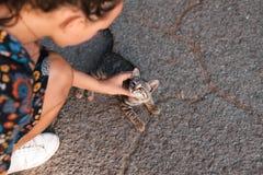 女孩在街道抚摸一只美丽的无家可归的猫 库存图片
