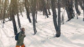 女孩在远足走的一个积雪的森林走 33c 1月横向俄国温度ural冬天 股票视频