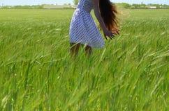 女孩在领域站立在太阳下 免版税库存图片