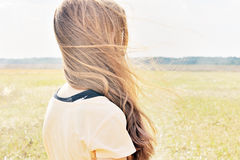 女孩在领域站立,并且风振翼她的头发 库存照片