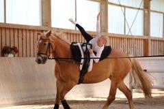 女孩在马做一个星 库存照片