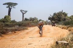 女孩在马达加斯加 图库摄影