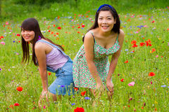 女孩在鸦片花田的姿势图片 免版税库存图片