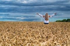 女孩在麦田中起来  免版税库存照片