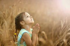 女孩在麦田祈祷 免版税图库摄影