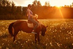 女孩坐一匹棕色马在日落在夏天 免版税库存图片