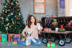 女孩坐地板在拿着礼物盒和举行狗的格子花呢披肩  免版税库存照片