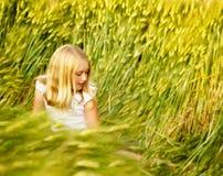 女孩坐的wheatfield 图库摄影