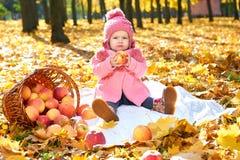 女孩孩子在有苹果篮子的,在秋季的美好的风景秋天公园与黄色叶子 库存照片