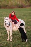 女孩孩子坐一个小马用他的手并且接触了狗 库存照片