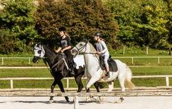 女孩实践马后面骑马 免版税库存照片