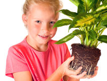 女孩室内植物 免版税库存照片
