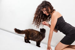 女孩小猫使用 免版税库存图片