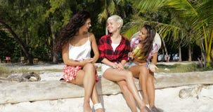 女孩小组谈的坐户外在棕榈树,愉快的微笑的妇女朋友通信下 股票录像