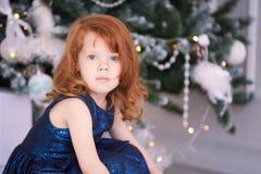 女孩少许纵向 圣诞节内部 水平 免版税图库摄影